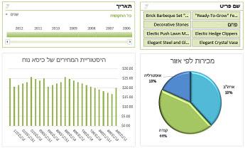 דוגמה ללוח מחוונים של Excel Services