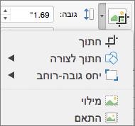 תפריט חיתוך ב- PPT for Mac