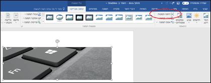 לחצן 'דחוס תמונות' בקבוצה 'התאמה' בכרטיסיה 'כלי תמונות | עיצוב אובייקט'