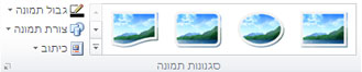 הקבוצה 'סגנונות תמונה' בכרטיסיה 'כלי תמונות' ב- Publisher 2010