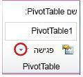 קבוצת PivotTable בכרטיסיה 'אפשרויות' תחת 'כלי PivotTable'