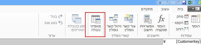 רצועת כלים בחלון PowerPivot המציגה את הפקודה 'מאפייני טבלה'