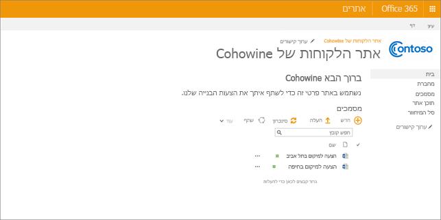 תמונה של המראה האפשרי של אתר משנה לאחר שאתה יוצר אותו.