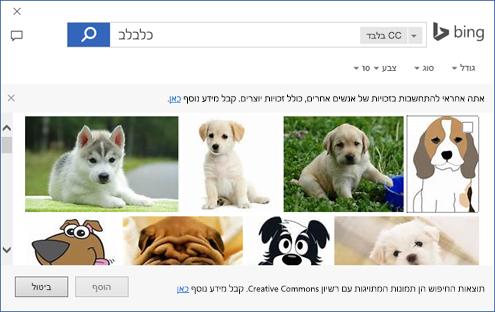 צילום מסך של תיבת הדו-שיח שבה באפשרותך להוסיף פריט אוסף תמונות ביישומי Office.
