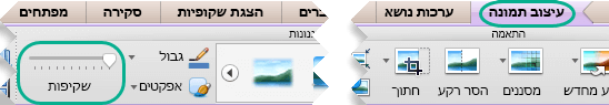 המחוון ' שקיפות ' עבור תמונות נמצא בכרטיסיה ' עיצוב תמונה ' כאשר תמונה נבחרת בשקופית
