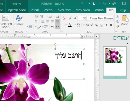 צילום מסך של תיבת טקסט בדף של קובץ Publisher.