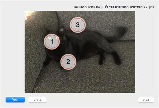 מציג תמונה עם כמה נקודות ממוספרת עניין נבחר שישמש ברקע מונפשות ב- PowerPoint.