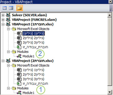 Project Explorer של VBA