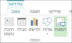 הכרטיסיה 'כלי דיווח - עיצוב'
