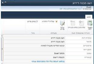 האפשרות 'הצג מאפיינים' מציגה פרטים אודות הדוח במצב קריאה בלבד