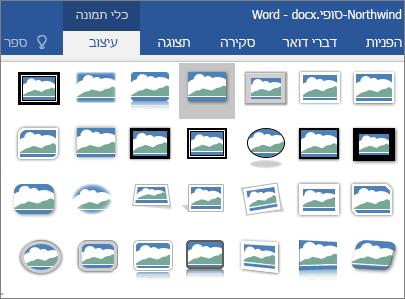 אפשרויות הגבול עבור תמונות מוצגות.