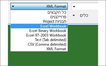 בחירת חוברת העבודה של Excel שיש לפתוח להצגת נתונים