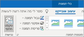 לחצן 'טקסט חלופי' ברצועת הכלים של Outlook עבור Windows.