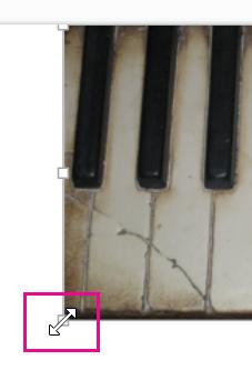 גרירת נקודת האחיזה לשינוי גודל של התמונה לכיסוי השקופית