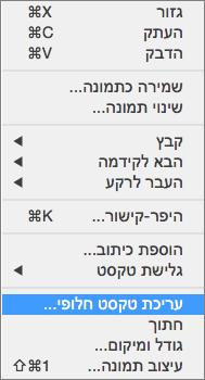האפשרות ' טקסט חלופי ' בתפריט תלוי ההקשר של-Word