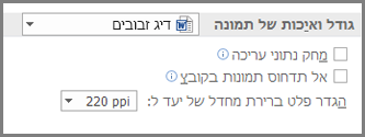 אפשרויות גודל תמונה ואיכות תמונה של Word 2013
