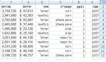 הנתונים המשמשים בדוח PivotTable