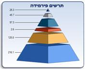 תרשים פירמידה