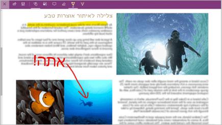 צילום מסך של הערת אינטרנט בדף הקצה של Microsoft