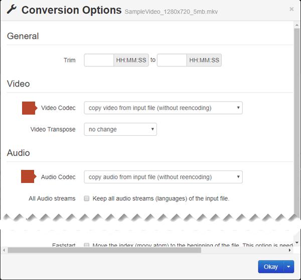 תיבת הדו-שיח Conversion Options כוללת אפשרויות עבור רכיב ה- Codec של הווידאו ורכיב ה- Codec של השמע