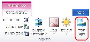 לחצן 'הסר רקע' בכרטיסיה 'כלי תמונות - עיצוב אובייקט' ברצועת הכלים של Office 2010