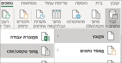 האפשרות 'מטקסט' מסומנת בכרטיסיה 'נתונים'.