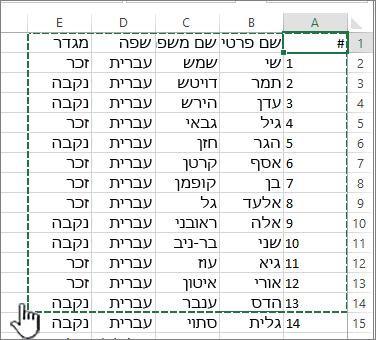 גיליון אלקטרוני של Excel עם טווח מסומן