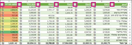 טבלת Excel המציגה מסננים מוכללים