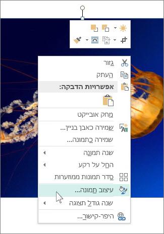 צילום מסך של אפשרויות 'עיצוב תמונה' ב- Publisher.