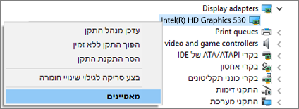 מעבר אל Windows במנהל ההתקנים כדי לנהל את מנהלי ההתקנים של מתאם התצוגה.