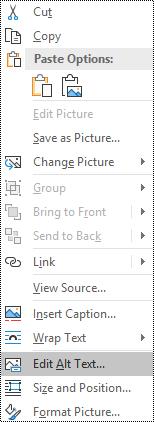 התפריט תלוי ההקשר של טקסט חלופי עבור תמונות ב-Outlook עבור Windows