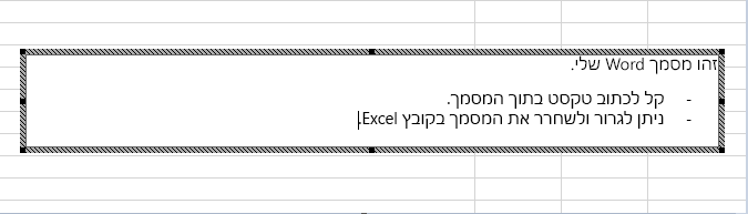 אובייקט מוטבע זה הוא מסמך Word.