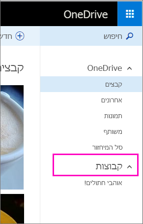 קבוצות Windows Live ב- OneDrive