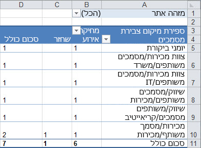 סיכום של נתוני הביקורת ב- Pivot table