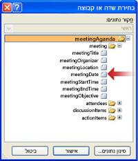 בחירת השדה meetingDate בתיבת הדו-שיח 'בחירת שדה או קבוצה'