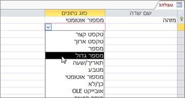 הרשימה 'סוג נתונים' כאשר האפשרות 'מספר גדול' מסומנת