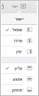 תפריט יישור טקסט iPad