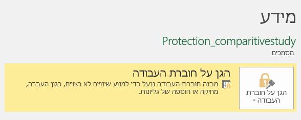 המצב 'הגן על חוברת העבודה' מסומן בכרטיסיה 'מידע'