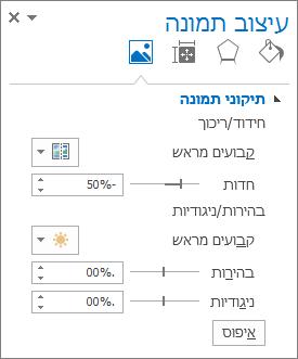 אפשרויות תיקוני תמונה בחלונית המשימות עיצוב תמונה