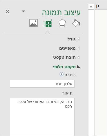 צילום מסך של האזור 'טקסט חלופי' בחלונית 'עיצוב תמונה' המתאר את התמונה שנבחרה