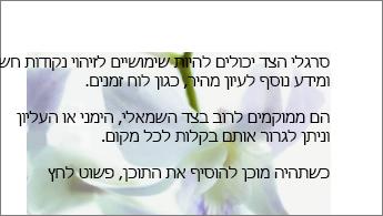 דוגמה של תמונה מאחורי בלוק של טקסט
