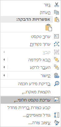 תפריט Win32 Excel עריכת טקסט חלופי עבור צורות
