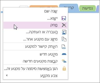 צילום מסך של אופן מחיקת מקטע ב- OneNote 2016.