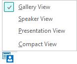 चयनित गैलरी दृश्य के साथ उपलब्ध मीटिंग दृश्यों वाला स्क्रीन शॉट