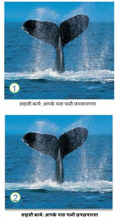 पाठ और चित्र प्रभाव