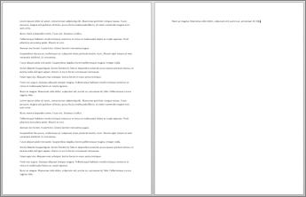 दो पृष्ठ वाला दस्तावेज़, जिसके दूसरे पृष्ठ में केवल एक वाक्य है