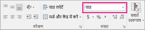 पाठ विकल्प संख्या स्वरूप बॉक्स में हाइलाइट किया गया है.