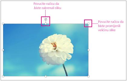 Slika s istaknutim ručicama za promjenu veličine