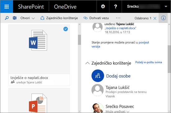 Snimka zaslona s oknom Detalji na servisu OneDrive za tvrtke u sustavu SharePoint Server 2016 s paketom značajki 1