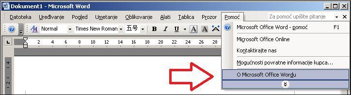 Word 2003 – Pomoć, O programu